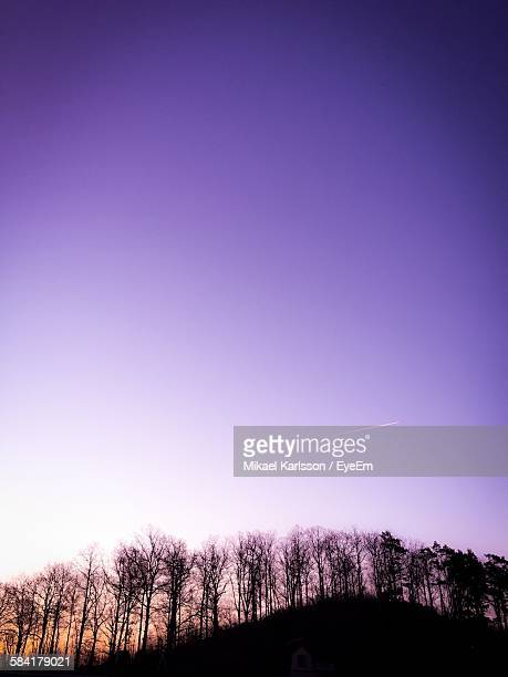 Low Angle View Of Silhouette Trees On Hill Against Sky