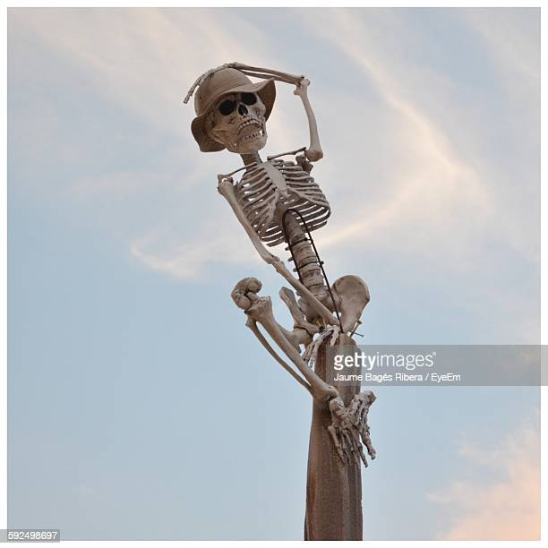 low angle view of skeleton on wooden post against sky during halloween - funny skeleton stock photos and pictures