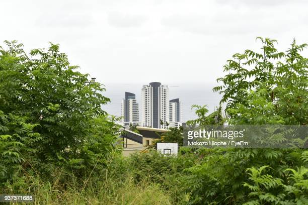 low angle view of skyscrapers against sky - durban stock pictures, royalty-free photos & images