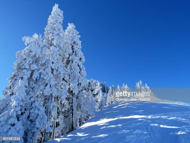 low angle view of snowcapped mountain against clear blue sky - christian hilse stock-fotos und bilder