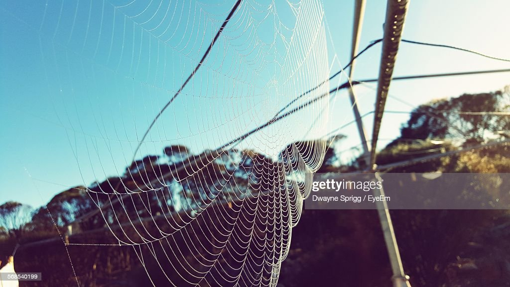 Low Angle View Of Spider Web On Antenna Against Clear Blue Sky : Stock Photo
