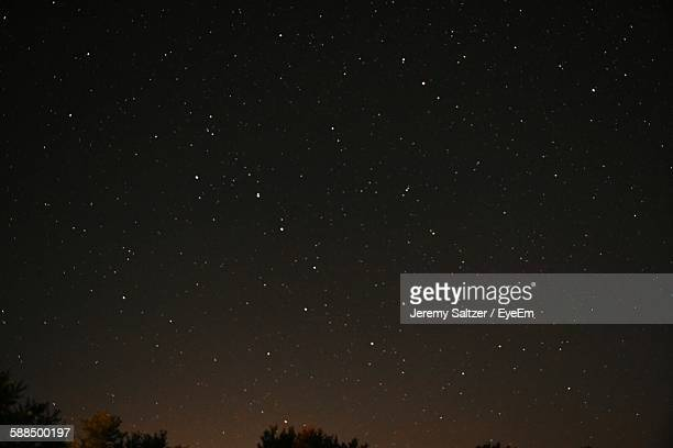 Low Angle View Of Stars Glowing In Sky Over Trees At Night