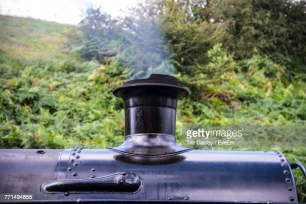 Low Angle View Of Steam Train Against Trees