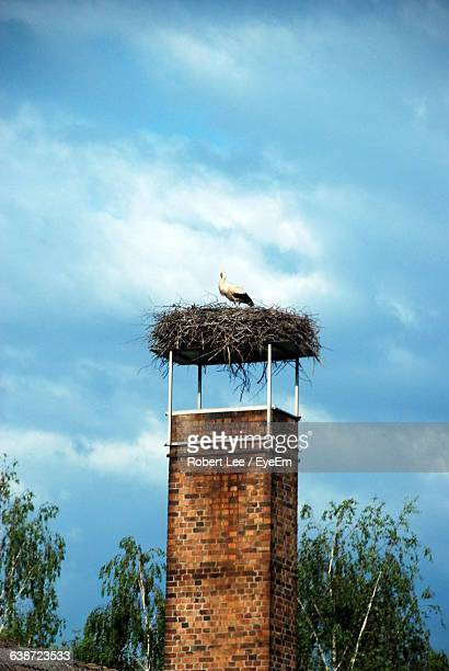 Low Angle View Of Stork In Nest On Abandoned Tower Against Cloudy Sky