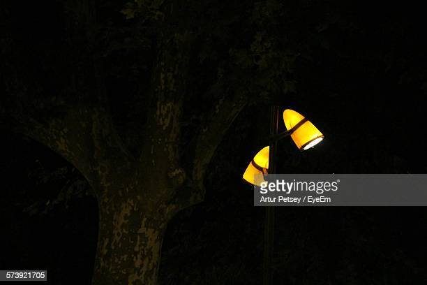 low angle view of street light by tree at night - artur petsey foto e immagini stock