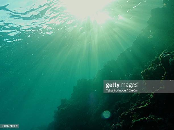 Low Angle View Of Sunbeam Undersea