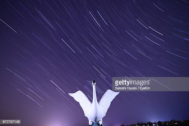 Low Angle View Of Swan Sculpture Against Star Trail