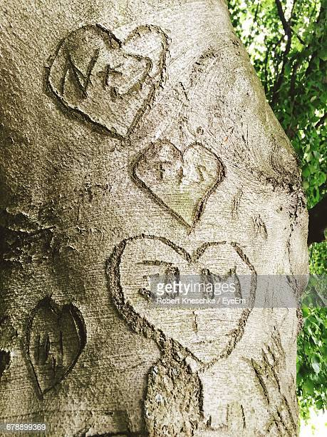 Low Angle View Of Text With Heart Shapes Carved On Tree Trunk