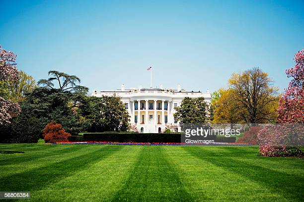 low angle view of the white house, washington dc, usa - la maison blanche photos et images de collection