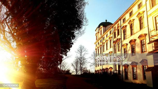 low angle view of tree and buildings against sky during sunset - celle stock photos and pictures