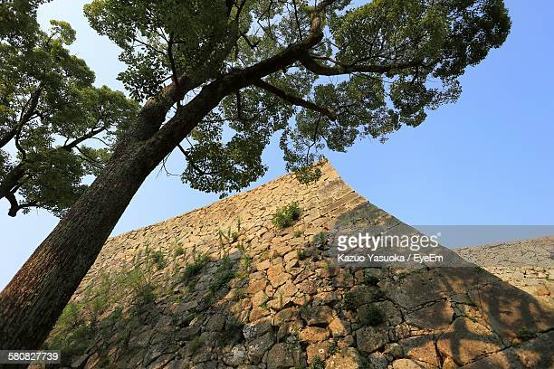 Low Angle View Of Tree By Stone Wall Of Castle Against Clear Blue Sky