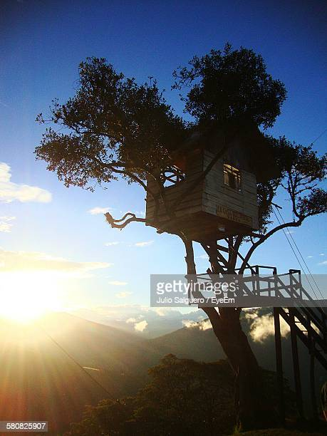 Low Angle View Of Tree House Against Sky During Sunset