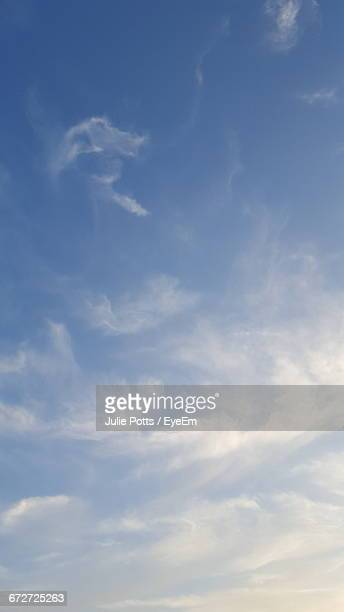 low angle view of trees against blue sky - alleen lucht stockfoto's en -beelden