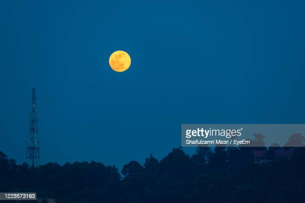 low angle view of trees against clear sky at night - shaifulzamri eyeem stock pictures, royalty-free photos & images