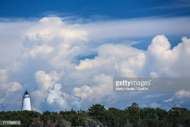 low angle view of trees against sky - marty hardin stock photos and pictures