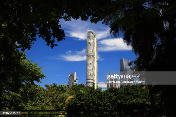 low angle view of trees and buildings against sky - tsim sha tsui stock pictures, royalty-free photos & images