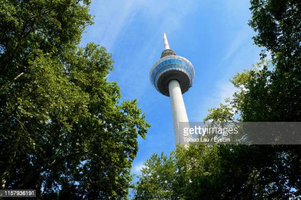 low angle view of trees and fernmeldeturm mannheim against sky - mannheim stock pictures, royalty-free photos & images
