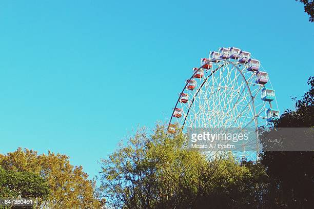 Low Angle View Of Trees And Ferris Wheel Against Clear Sky