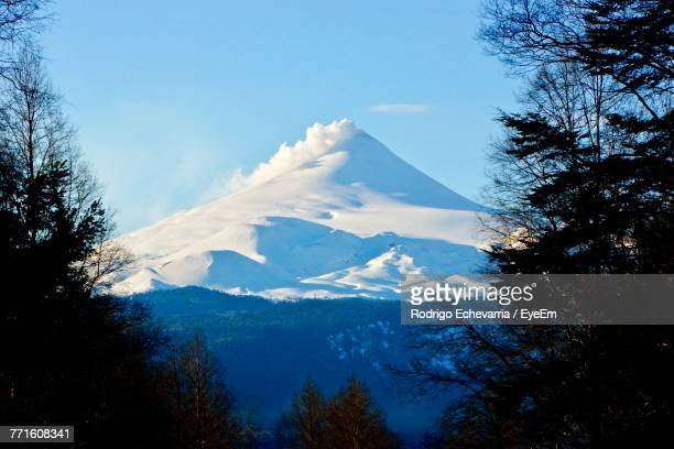 low angle view of trees and mountains against blue sky - villarrica stock photos and pictures