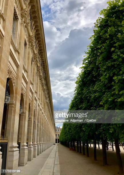 low angle view of trees by building against sky - palais royal stock pictures, royalty-free photos & images