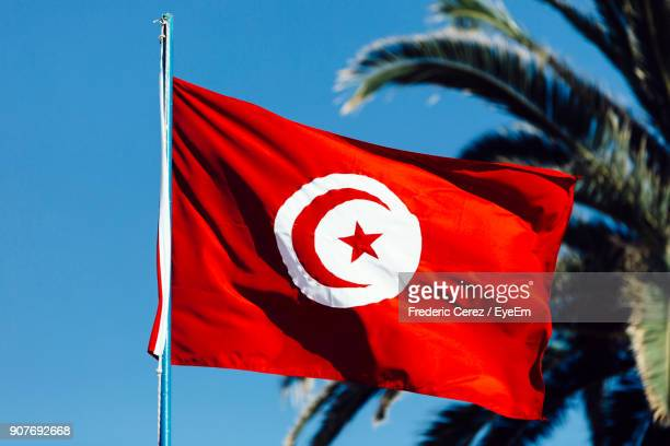 Low Angle View Of Tunisian Flag Fluttering Against Clear Sky