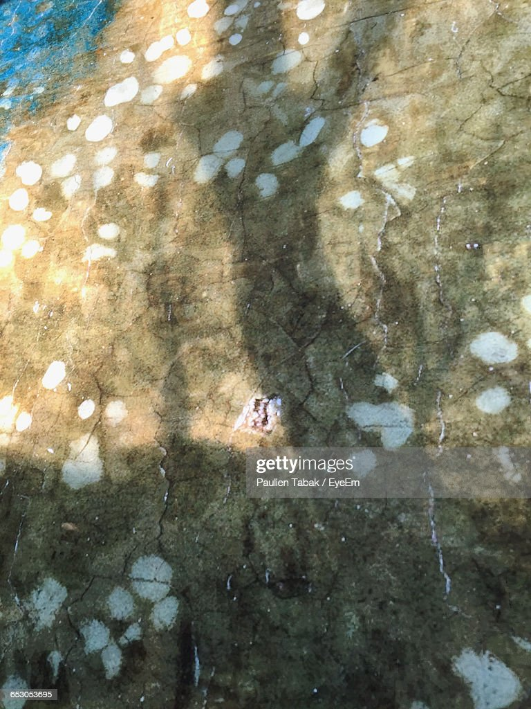 Low Angle View Of Wall On Sunny Day : Stock-Foto