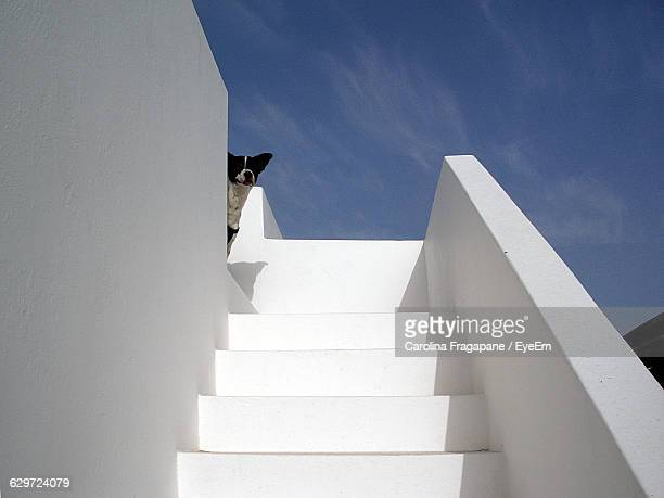low angle view of whitewashed stairway against sky - carolina fragapane stock pictures, royalty-free photos & images
