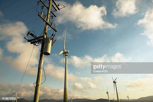 Low angle view of wind turbines and a telephone pole in rural setting