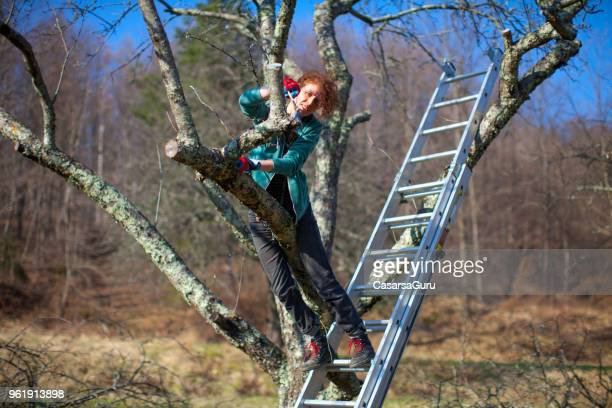 Low Angle View Of Woman Protecting Apple Tree Wound After Pruning