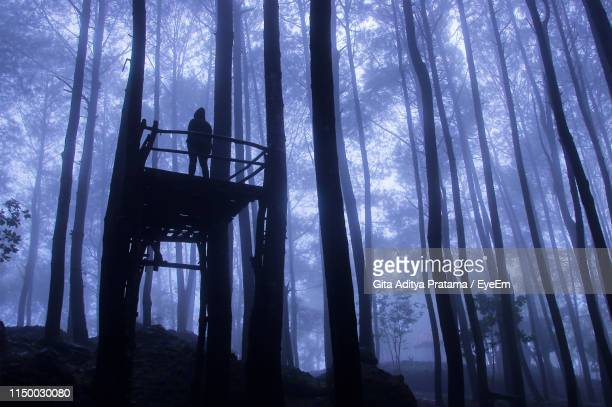 low angle view of woman standing on lookout tower against trees in forest - lookout tower stock pictures, royalty-free photos & images