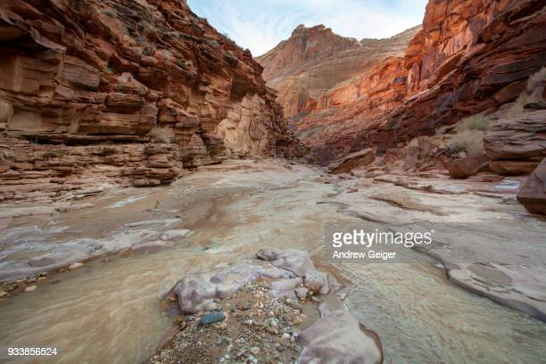 Low angle wide shot of river running through red rock desert canyon.