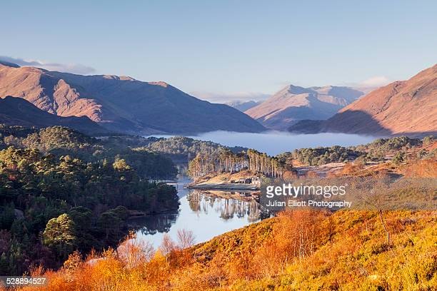 low autumn mist at dawn in glen affric - scotland stock pictures, royalty-free photos & images