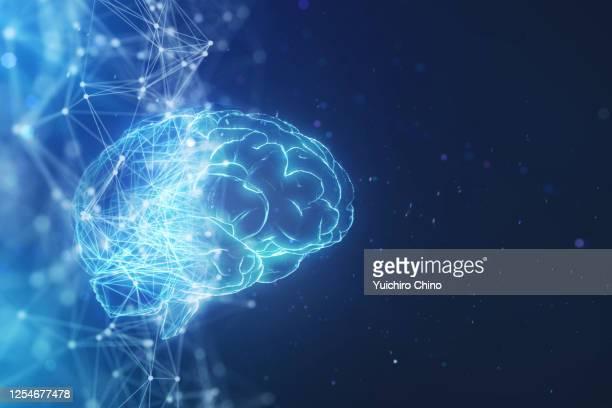 low poly wire making ai brain - 人工知能 ストックフォトと画像