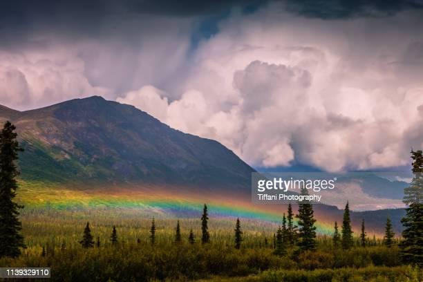 low rainbow in front of mountain in alaska with clouds, trees, and field - paisajes de alaska fotografías e imágenes de stock