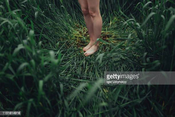 low section of barefoot woman standing on grass - mujer desnuda naturaleza fotografías e imágenes de stock