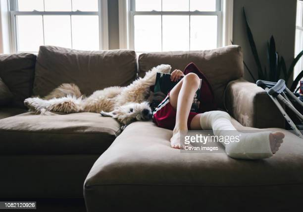 low section of boy with fractured leg reading book while lying by dog on sofa at home - pierna fracturada fotografías e imágenes de stock