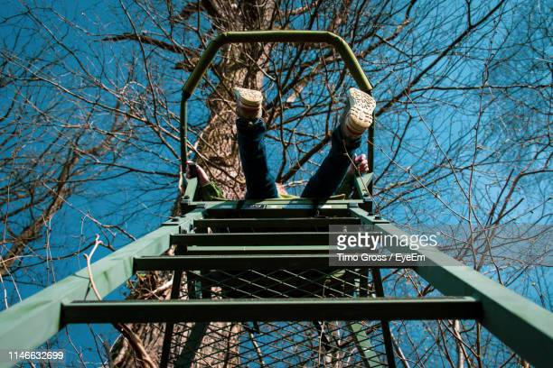 low section of child on steps against bare trees - human leg stock pictures, royalty-free photos & images