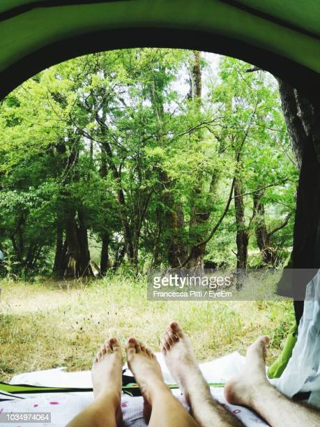 low section of couple in tent against trees - coppia eterosessuale foto e immagini stock
