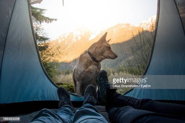Low Section Of Couple In Tent