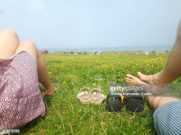Low Section Of Couple Resting By Champagne Flutes On Grassy Field Against Clear Sky