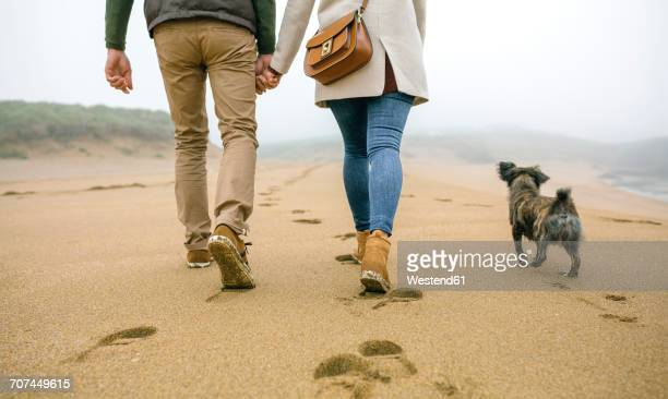 Low section of couple walking on the beach with dog in winter