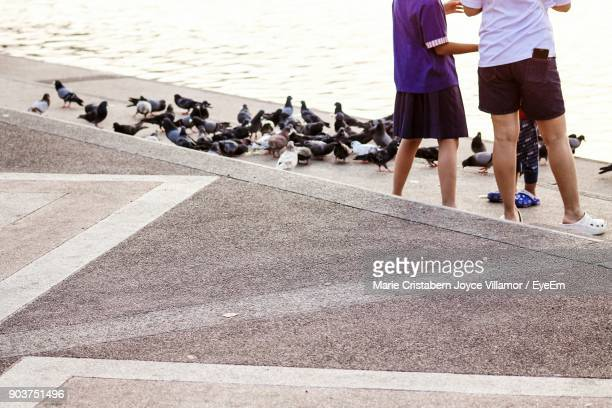 Low Section Of Family Standing By Pigeons On Steps