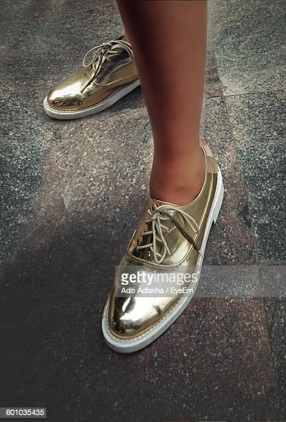 Low Section Of Fashionable Woman With Golden Shoes