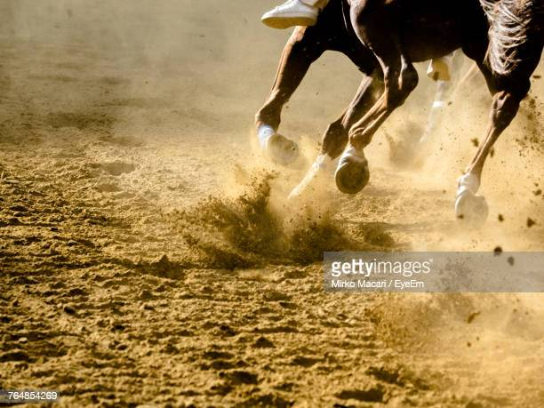low section of horse running on sand - horse racing ストックフォトと画像