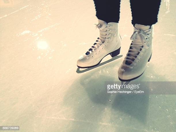 Low Section Of Ice Skater