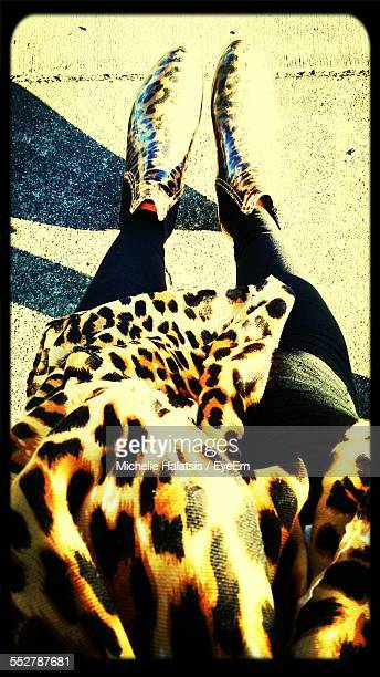 Low Section Of Leopard Print High Heels