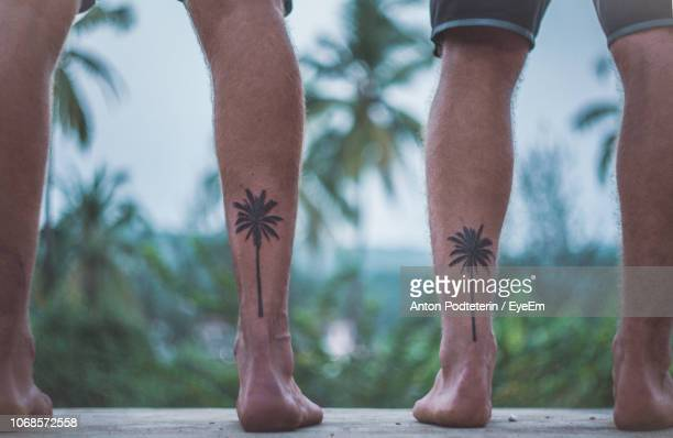 low section of male friends with palm tree tattoos on railing - tatuagem imagens e fotografias de stock