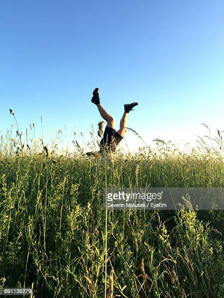 Low Section Of Man Doing Handstand Amidst Plants On Field Against Clear Blue Sky