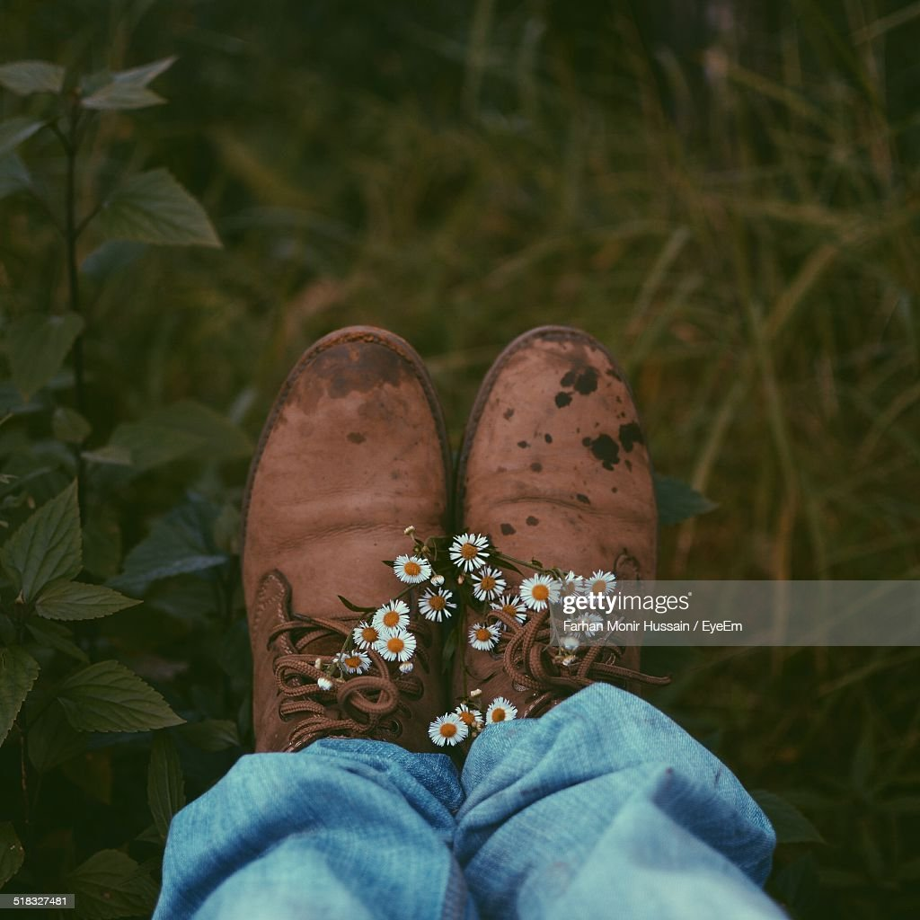 Low Section Of Man Leg With Daisy Flowers On Shoes : Stock Photo