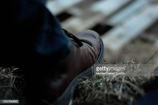 low section of man on field - michael stock photos and pictures